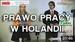 Porady prawne - Holandia. Holenderskie Prawo Pracy 2016